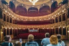 Prohlídka historické budovy Divadla J. K. Tyla